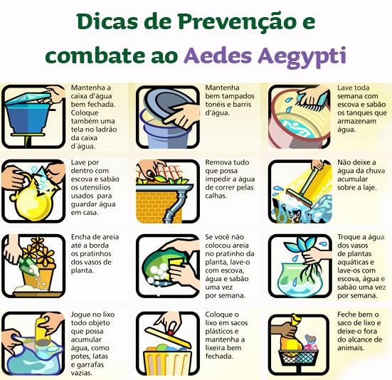 dengue-como-prevenir-10.1